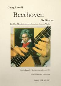 Lawall, Beethovenbuch